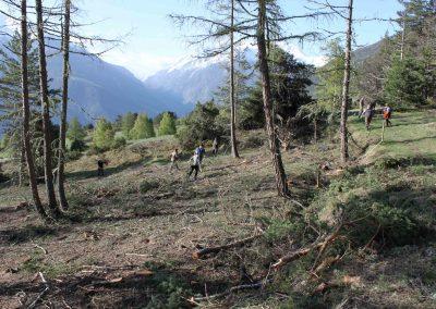 Jäger der Diana Visp und Umgebung (Ortsgruppen St. Niklaus und Visp) im Einsatz